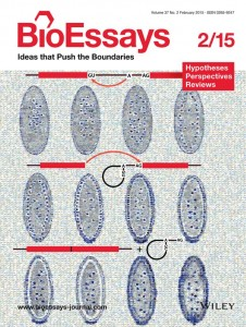 bioimage computing workshop cvpr bioimage computing methods cover 2014 small nm 2009 cover fullres bioessays backcover nm cover 02 nature cover 02